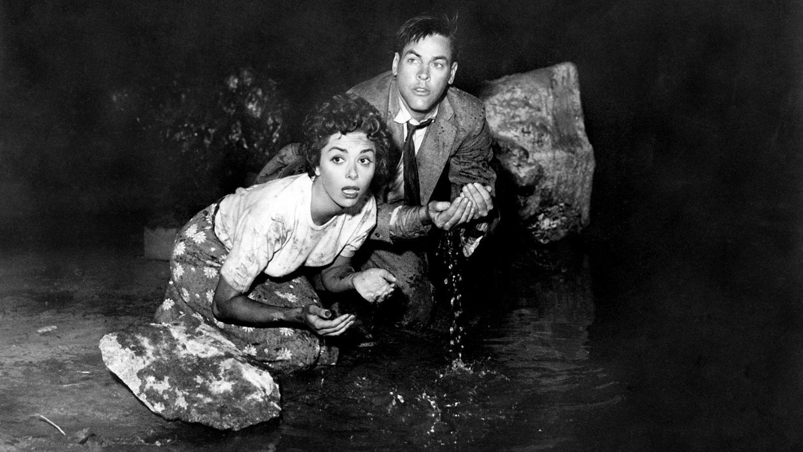 Invasion of the Body Snatchers (1956) — Science on Screen